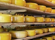 Хранилище для сыра